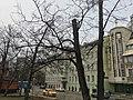 Shabolovka Street, Moscow - 5527.jpg