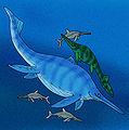 Shastasauridae.jpg