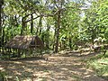 Shelter by presa.jpg