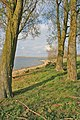 Shoreline at the East end of Rutland Water - geograph.org.uk - 161758.jpg