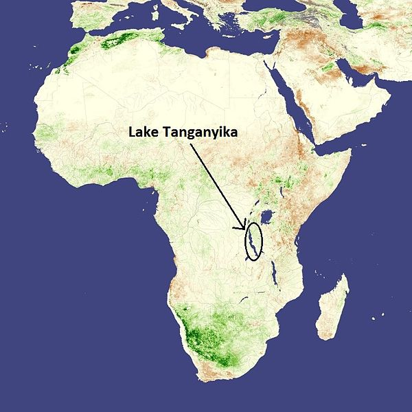Description Shows Lake Tanganyika in African continent.jpg