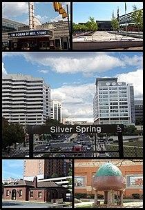 Silver Spring Montage.jpg