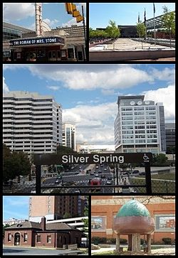 Silver Spring Maryland Wikipedia - Apartments in downtown silver spring md