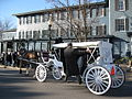 Skaneateles, New York horsedrawn.jpg