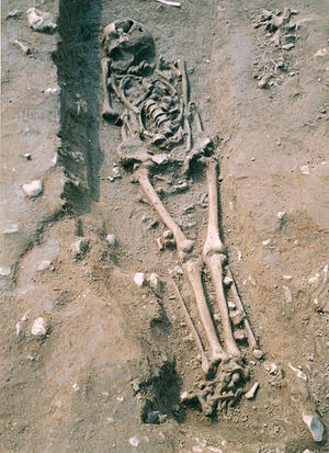 Sedgeford - Anglo Saxon era skeleton found at the Sedgeford Digsite in Norfolk, 2005.