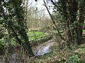 Smestow Brook (River) near Prestwood - geograph.org.uk - 746969.jpg