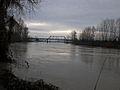 Snohomish River-1.jpg
