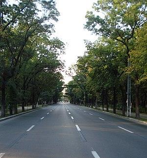 Șoseaua Kiseleff - Şoseaua Kiseleff
