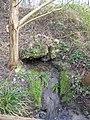 Source secondaire dans la colline Cacao.jpg