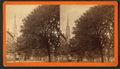 South Broad Street, Savannah, Ga, from Robert N. Dennis collection of stereoscopic views 6.png