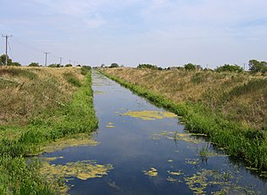 South Forty-Foot Drain - The South Forty-Foot Drain at Pointon, between Boston and Guthrum Gowt. Here its origin as a drainage channel is very evident.