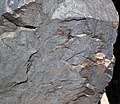 Specularite (high-grade iron ore) (Soudan Iron-Formation, Neoarchean, ~2.69 Ga; Soudan Mine, Soudan, Minnesota, USA) 14 (19005636316).jpg