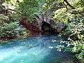 Spomenik prirode Krupajsko vrelo.jpg