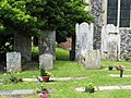 St Mary the Virgin, Woodnesborough, Kent - Churchyard - geograph.org.uk - 326000.jpg