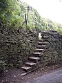Steps leading to footpath, Wood Bottom Lane - geograph.org.uk - 563129.jpg