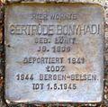 Stolperstein Salzburg, Gertrude Bonyhadi (Rainerstraße 4).jpg