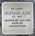 Stolperstein für Judit Kaufmann (Miskolc).jpg