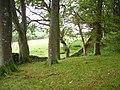 Stripwood, Bowland - geograph.org.uk - 255249.jpg