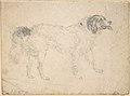 Study of a Dog Facing Right MET DP804687.jpg