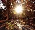 Sunlight park Toronto May 2012.jpg