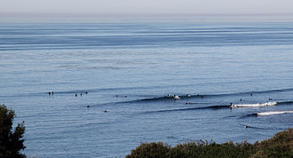 Swami's - Waves and surfers on the point break at Swami's, viewed from the cliff top park