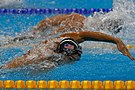 Swimming 4x100m freestyle relay 2017-08-07 17.jpg
