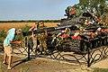 Tank memoriaal Novosvetlovkas.jpg