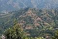 Terrace Farming in Nepal in Rakathum VDC-0359.jpg