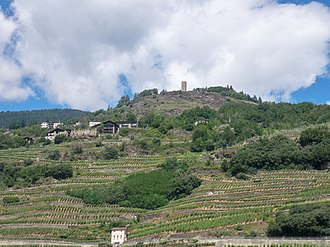 Province of Sondrio - Terraced fields in Valtellina.