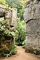 The 'Quarry Garden' at Belsay Castle (4) - geograph.org.uk - 1384676.jpg