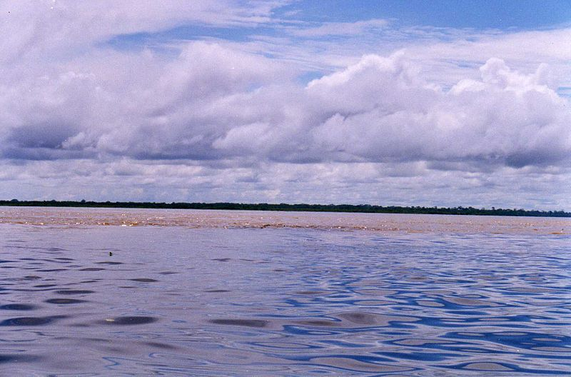 File:The Amazon meets Rio Nanay.jpg