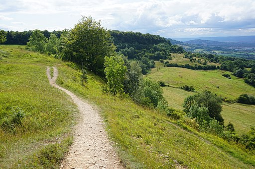 The Cotswold Way at Barrow Wake (geograph 4742771)