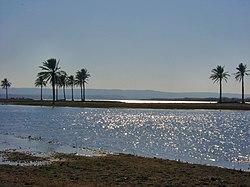 The Euphrates River-Iraq.jpg