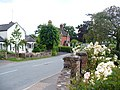 The Street - geograph.org.uk - 1363041.jpg