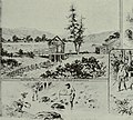 The history of the San Francisco disaster and Mount Vesuvius horror (1906) (14782347815).jpg