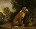 Thomas Gainsborough (1727-1788) - A Setter in a Landscape - 486293 - National Trust.jpg
