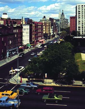 Alan Sonfist - Time Landscape of New York