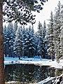 Tioga Lake Reflections, Yosemite 5-15 (23547961683).jpg