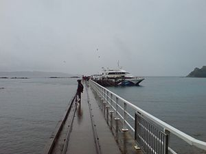 Tiritiri Matangi Pier Looking Westwards.jpg