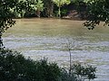 Tisza river - Szolnok, Hungary (13).JPG