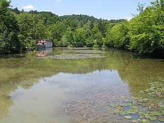 pond in Tivoli Park in Ljubljana, Slovenia
