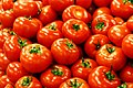 Tomatoesflickr.jpg