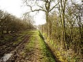 Track from Welburn House to Carr Lane - geograph.org.uk - 1222695.jpg