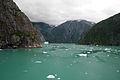 Tracy Arm Fjord.jpg