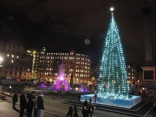 FileTrafalgar Square Christmas Tree 2011 At NightJPG