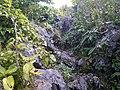Trail of Mount Awa, Okinawa 01.jpg