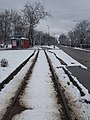 Tram tracks in Besenyő Park, 2018 Rákospalota.jpg