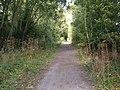 Trans Pennine Trail, Whitedale - geograph.org.uk - 1467581.jpg
