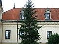 Trebisov Andrassyovsky kastiel (main building)-19.JPG