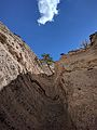 Tree and cloud from Slot Canyon Trail in Tent Rocks National Monument.jpg